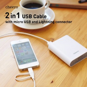 2-in-1-cable